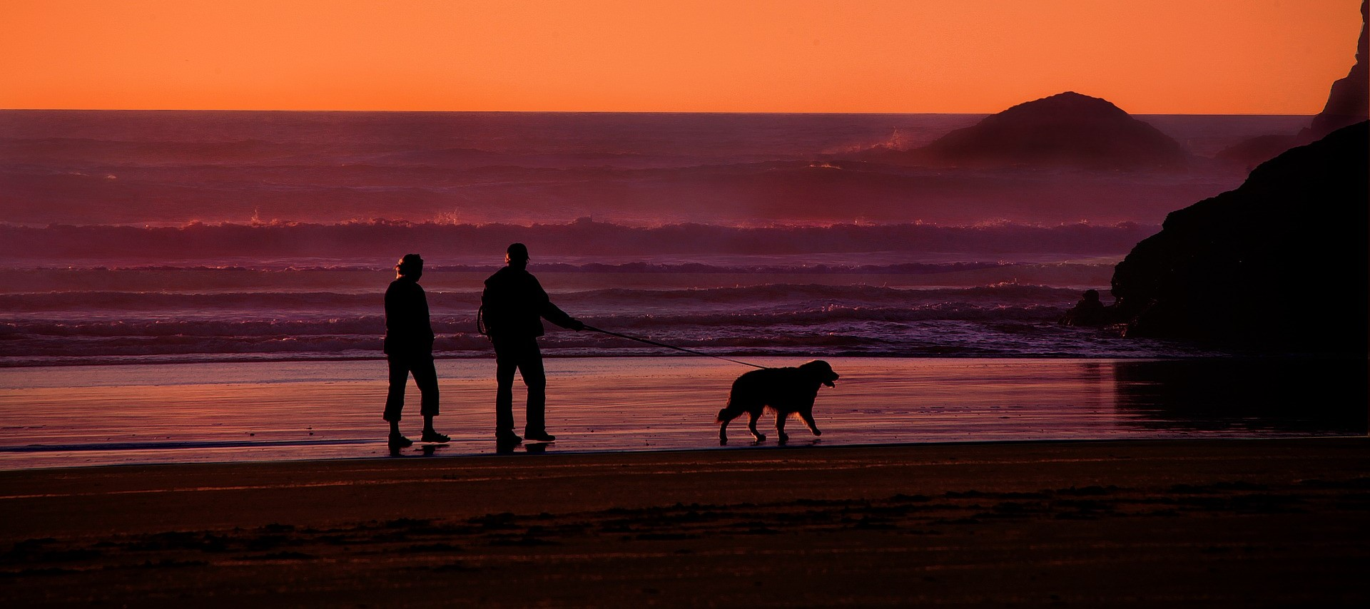 Mature couple walking dog on beach